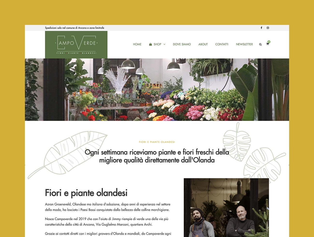 campoverde-fiori-piante-ancona-ecommerce-shop-online_02_gazpa