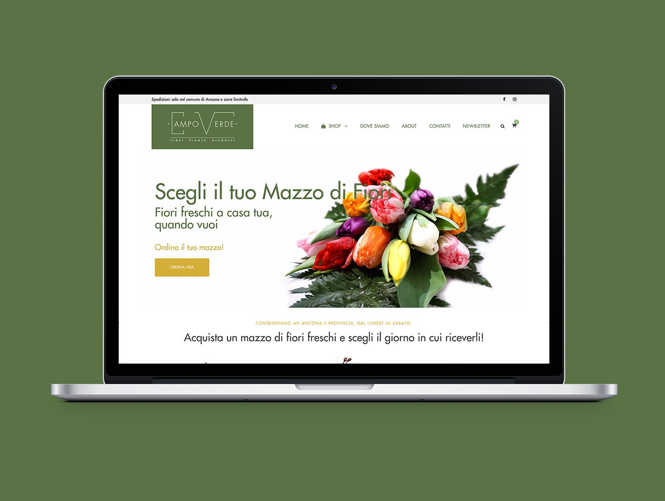 campoverde-fiori-piante-ancona-ecommerce-shop-online_gazpa